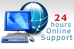 24 hours online support